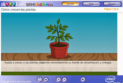 http://www.wikisaber.es/Contenidos/LObjects/how_plants_grow/index.html
