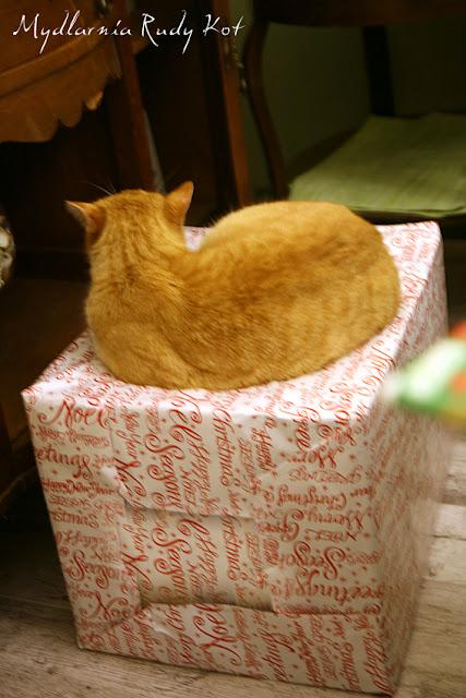 W Mydlarni Rudy Kot kupisz delikatne mydła tylko z naturalnych składników