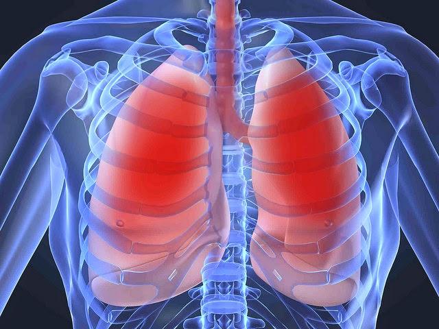 Cara Menjaga Kesehatan Paru-paru