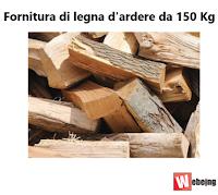 Logo Vinci gratis una fornitura di legna da ardere da 150 kg.