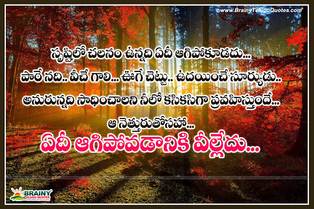 Here is the best quotes about self respect, Best telugu self respect quotes, Inspiring quotes about self respect, Best inspirational Quotes about self respect, Top famous quotes about self respect, Online trending latest self respect quotes for face book whatsapp tumblr and google plus, Telugu inspirational self respect and attitude change quotes with images.