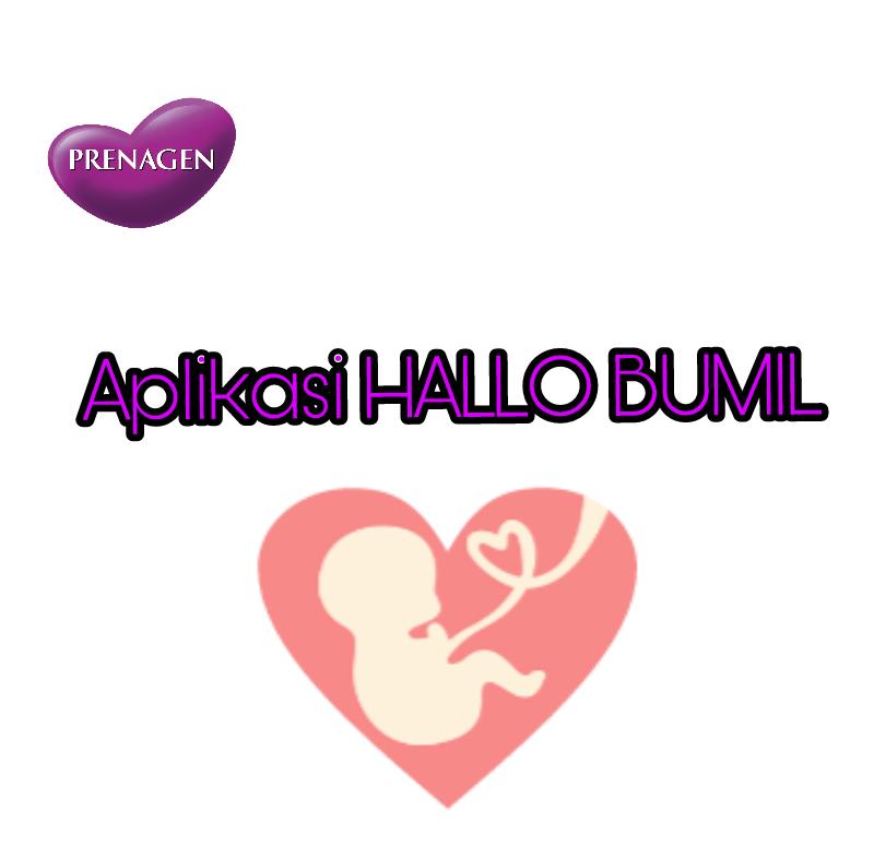 Aplikasi Hallo Bumil Kurnia Amelia