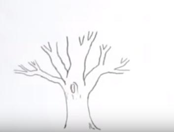 Karakalem Ağaç çizimi Nasıl Yapılır Karakalem çizimleri