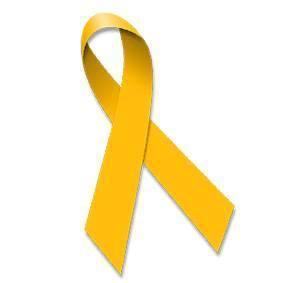 www.endometriosemulher.com