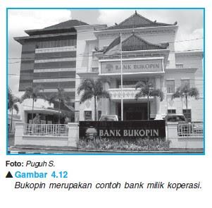 Jenis Jenis Bank  Menurut Kepemilikan 2