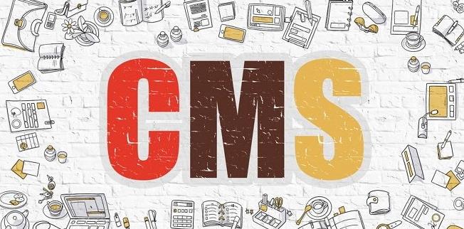 Definisi Detail Pengertian CMS Beserta Fungsi Dan Macam-Macam CMS Terlengkap