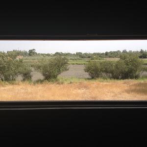 Ideas para visitar Doñana gratis y por libre