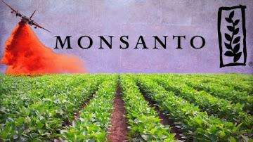 O veneno da Monsanto cada vez mais esta no seu corpo