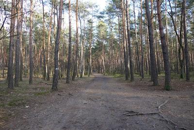 szlak zielony z Karczmiska do Mogiły powstańców