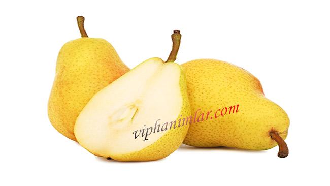 Armut - www.viphanimlar.com