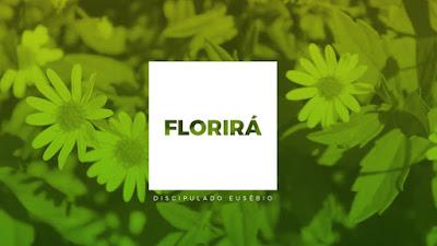 Florirá - Comunidade Católica Shalom, música e letra