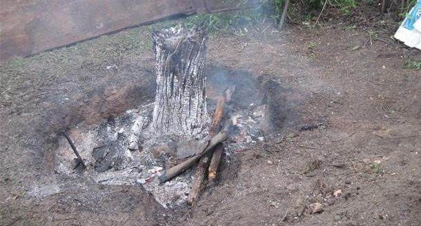 Удаление пня огнем