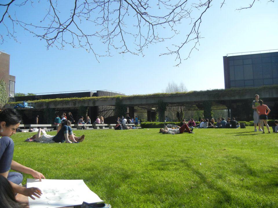 University of Limerick , Irlanda