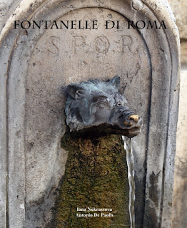 http://it.blurb.com/b/5709805-fontanelle-di-roma
