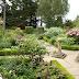 Kiftsgate Court Gardens, England I
