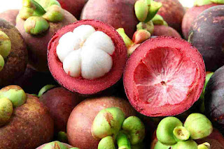 manfaat kulit manggis, cara mengolah kulit manggis