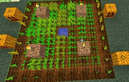 當個創世神 (Minecraft) 種植小麥南瓜甘蔗等全作物圖文教學   娛樂計程車