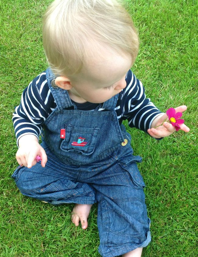 picture of baby sat on the grass in dungarees holding and looking at pink flower