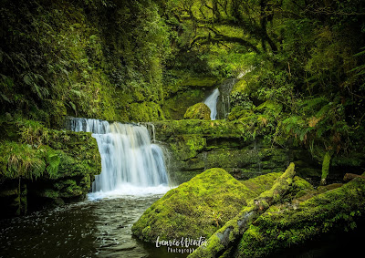 Catlins, McLean Falls, New Zealand, NZ, Southland, Waterfall