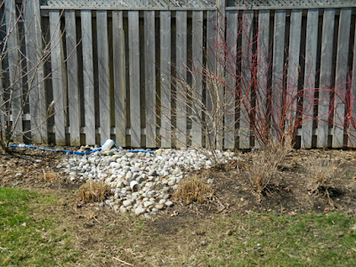 North York Toronto spring garden clean up after by Paul Jung Gardening Services