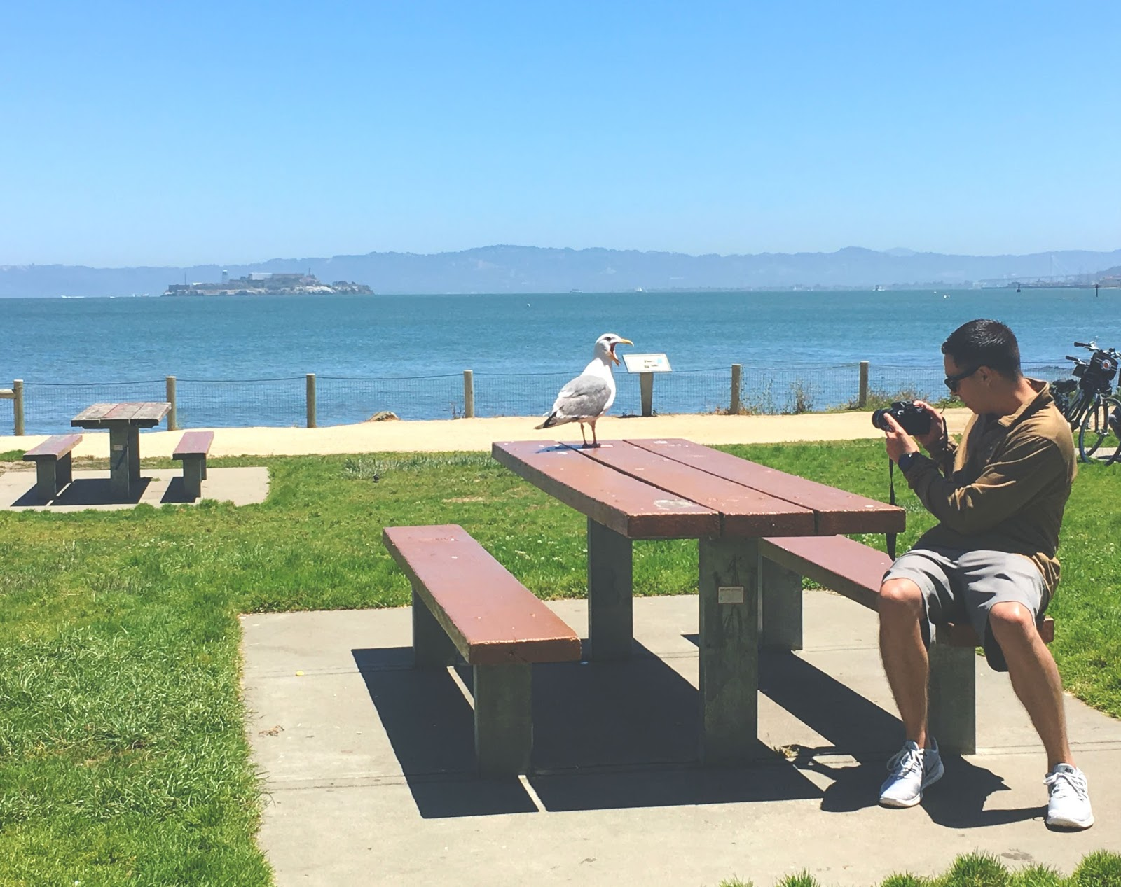 West Bluff Park in San Francisco, California