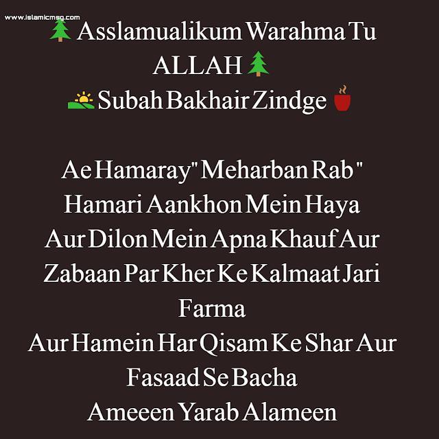 Ae Hamaray  Meharban Rab