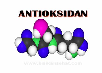 Manfaat Antioksidan