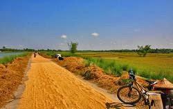 Bangladesh 3