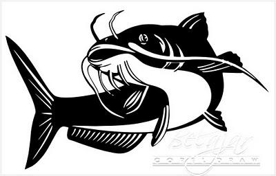 Santi Dewi Ikan Kembung Ikan Lele