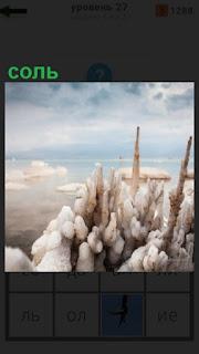 1100 слов соль на берегу около воды 27 уровень