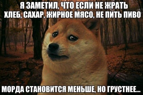 ochen-bolshoy-penis-ebet-devku-v-zhopu