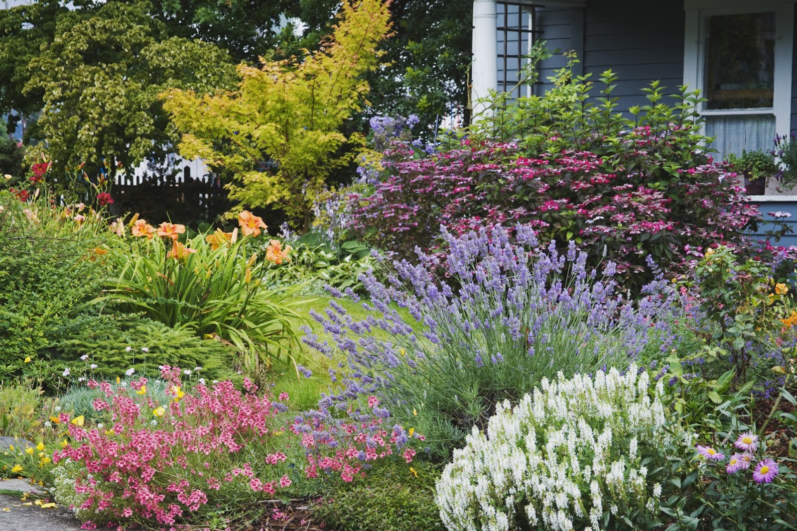 Low maintenance gardening tips for Low maintenance garden