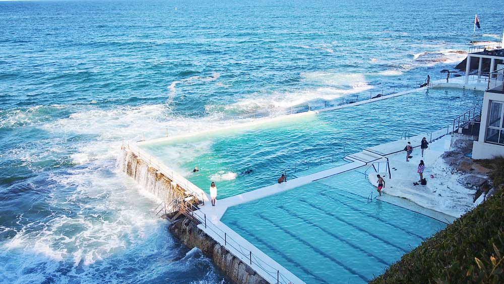 Saltwater Infinity Pool at Bondi Icebergs Club - Down Under Travel Guide: What You Can Eat and Do in Sydney
