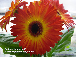 Image of yellow and red Gerbera flowers in bloom with text: Be kind to yourself, nurture your inner flower