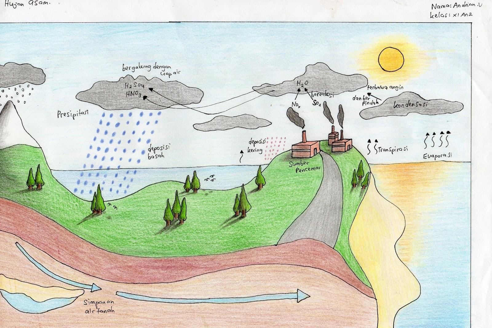 GAMBAR PROSES HUJAN ASAMACID RAIN  LET US STUDY