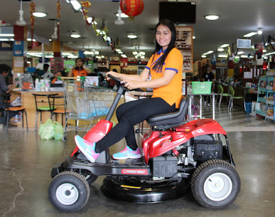 Thailand Troy Bilt Ride on Lawn Mower Delivery