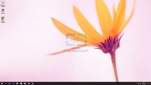 Escritorio de Windows 10 con una flor de wallpaper