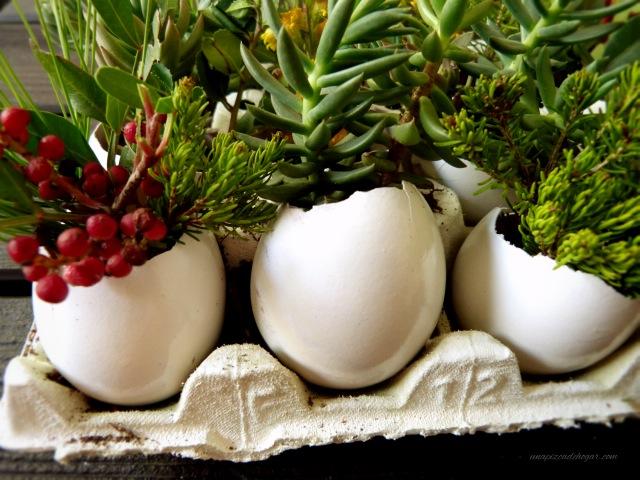 DIY maceteros con cáscaras de huevo y flores