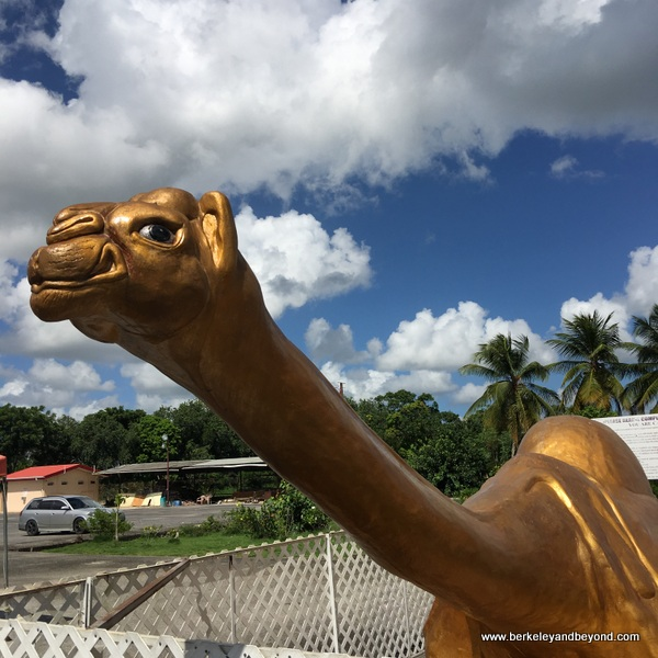 camel statue at Dattatreya Temple in Carapichaima, Trinidad