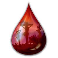 Resultado de imagem para gota de sangue