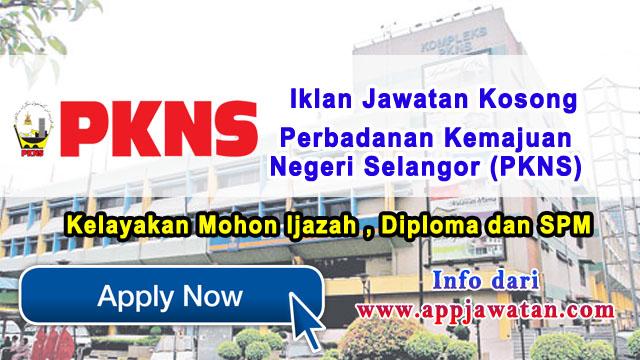 Perbadanan Kemajuan Negeri Selangor (PKNS