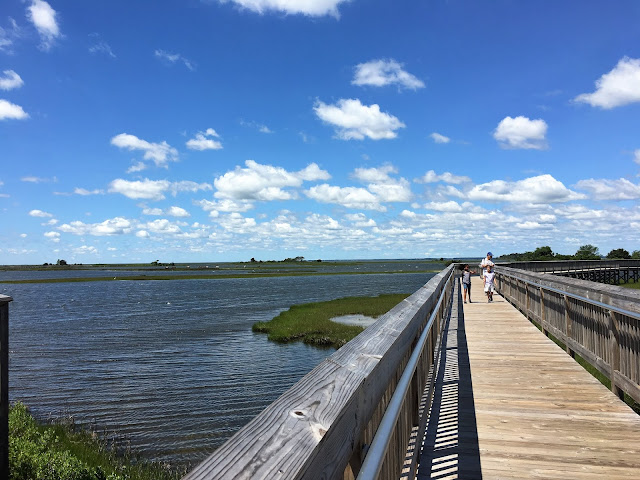 assateague island marsh trail hiking