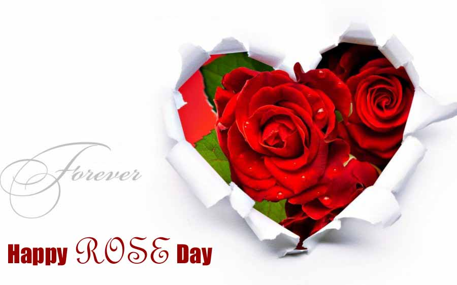 rose day images with name