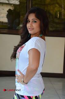 Actress Madhavi Latha Latest Stills at Swachh Hyderabad Cricket Press Meet  0025.JPG