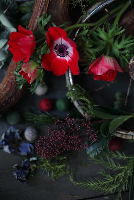 anemone, kruunuvuokka, skimmia, feltball