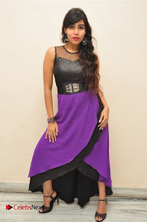Telugu Actress Rachana Smith Stills at Money is Honey Audio Release  0066.jpg