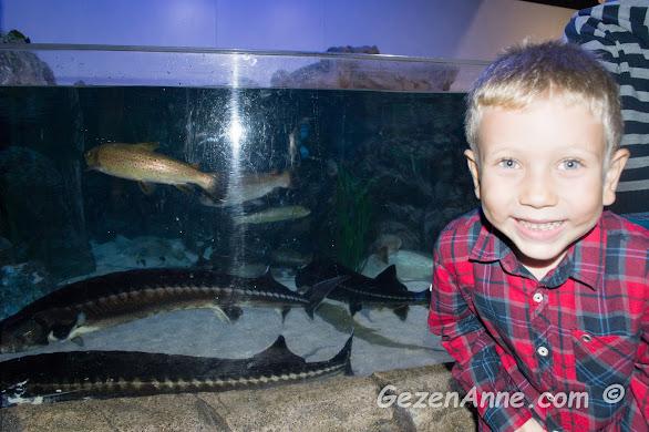 balıkların yanında gülümseyen oğlum, Sea Life Akvaryum İstanbul