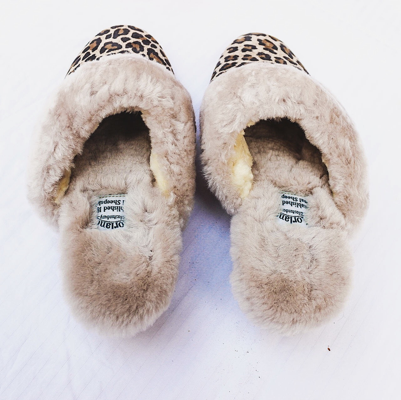 morlands slippers, morlandssheepskin, morlands glastonbury, morlands review, morlands slipper review, how to keep warm at home, how to keep warm, winter tips, cosy winter, keep warm tips, cope with winter, uk blog, london blog, top indian blog, indian luxury blog,