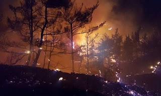 Μαίνονται οι πυρκαγιές στην Ηλεία