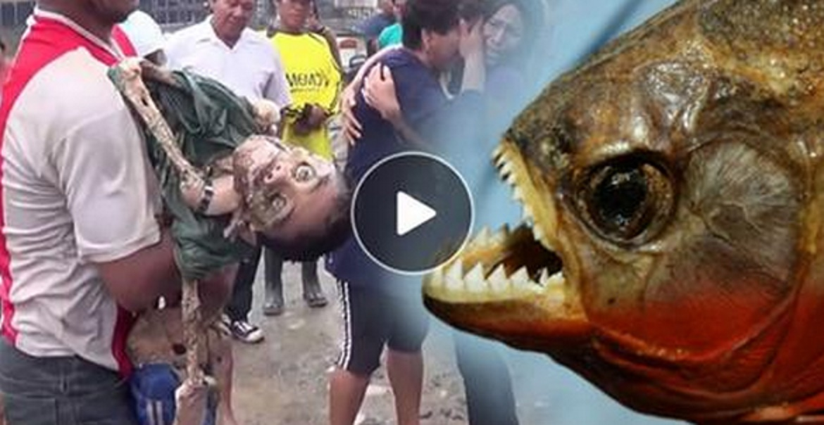 (Video)11 year old boy is eating by small fish piranhas in ...